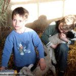 agneaux_enfants